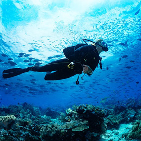 scuba diving taster dive